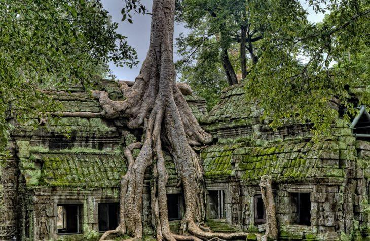 temples dangkor Cambodge